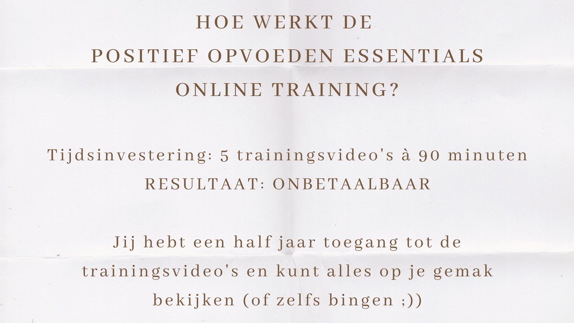 hoe werkt de positief opvoeden essentials online training?